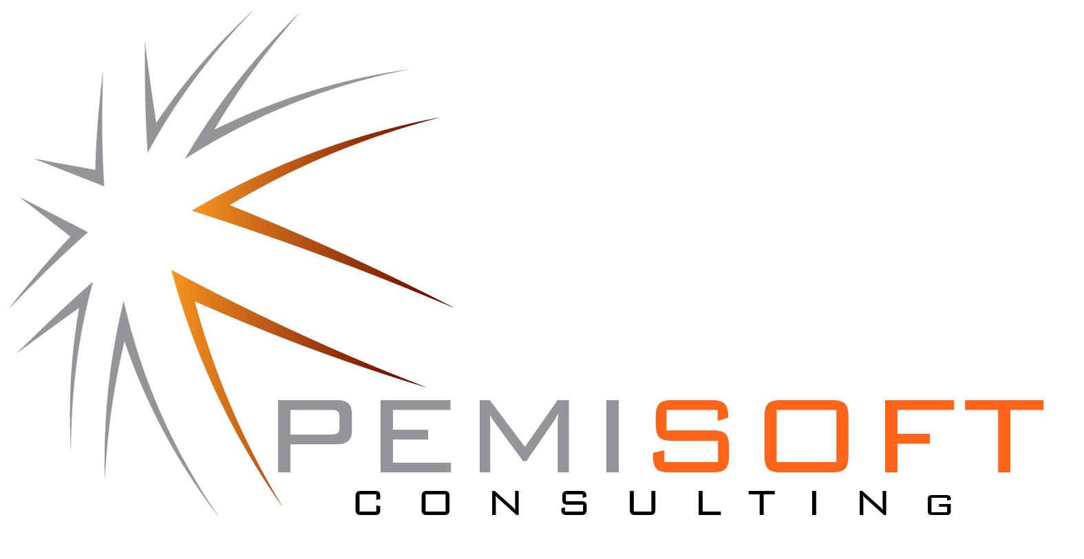 Pemisoft Consulting